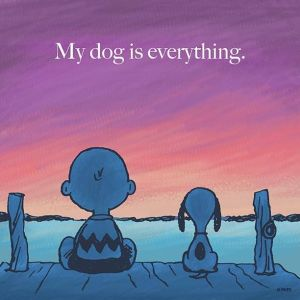 dog is everything